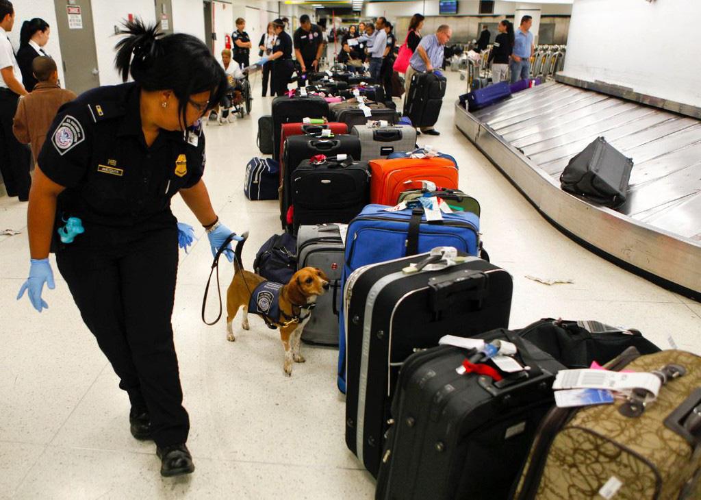 Mang nhiều tiền, vàng và các qui định xuất nhập cảnh ở sân bay - Ảnh 2.
