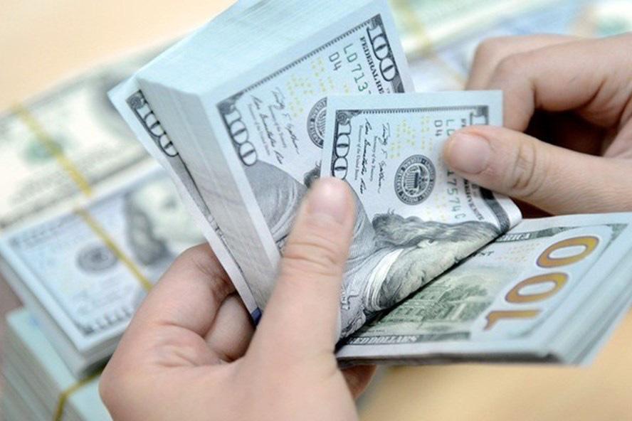 Giá USD hôm nay 9/1: Hồi phục khó bền vững - Ảnh 2.