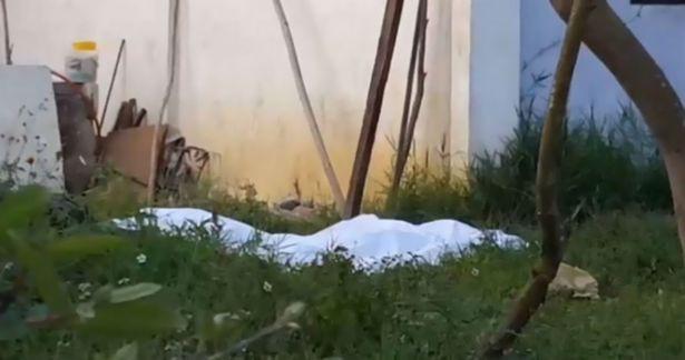 Chó nuôi trong nhà cắn chết cô gái 19 tuổi đang lên cơn động kinh - Ảnh 1.