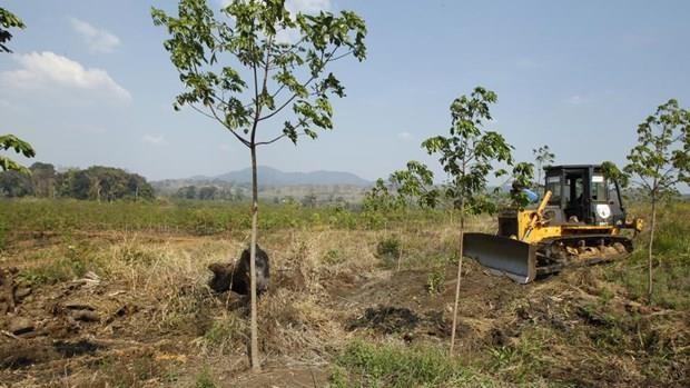 Campuchia thu hồi 742 ha đất của bầu Đức  - Ảnh 1.