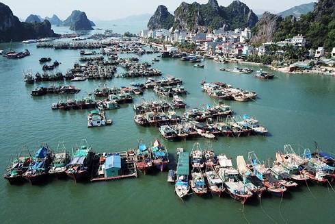 Thủ tướng phê duyệt Nhiệm vụ điều chỉnh quy hoạch chung xây dựng KKT Vân Đồn - Ảnh 1.