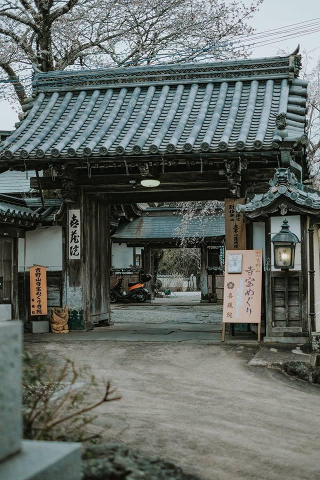 Không phải ở Tokyo hay Kyoto mà chính nơi này mới là thủ phủ hoa anh đào của Nhật Bản - Ảnh 5.