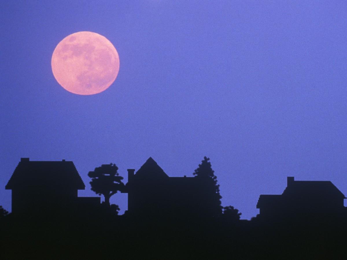 Giải mã hiện tượng mặt trăng hồng chỉ xuất hiện trong dịp lễ Phục sinh - Ảnh 3.