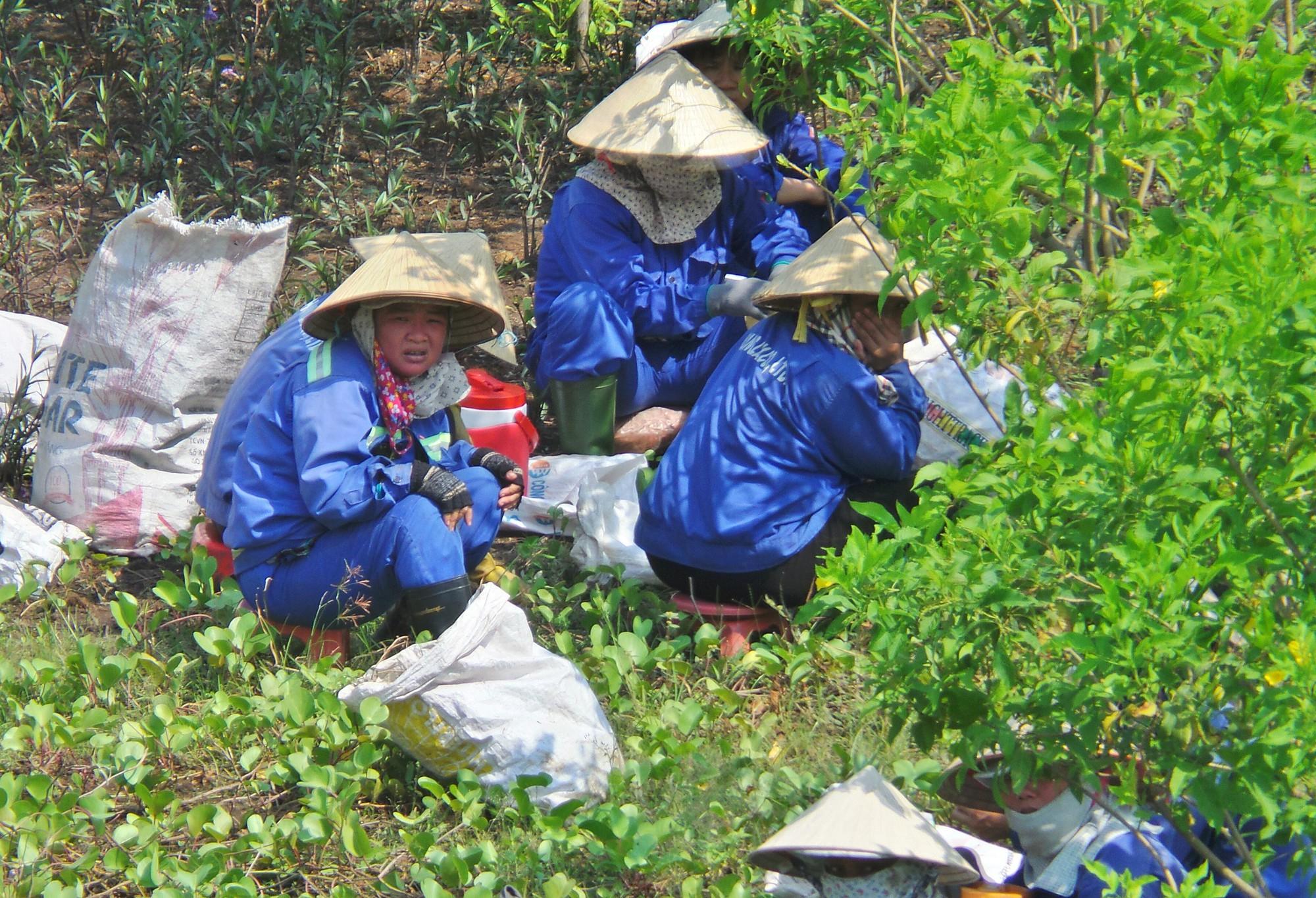 Sài Gòn nóng gần 40 độ C: Người dân xuống gầm cầu mắc võng ngủ trưa - Ảnh 3.