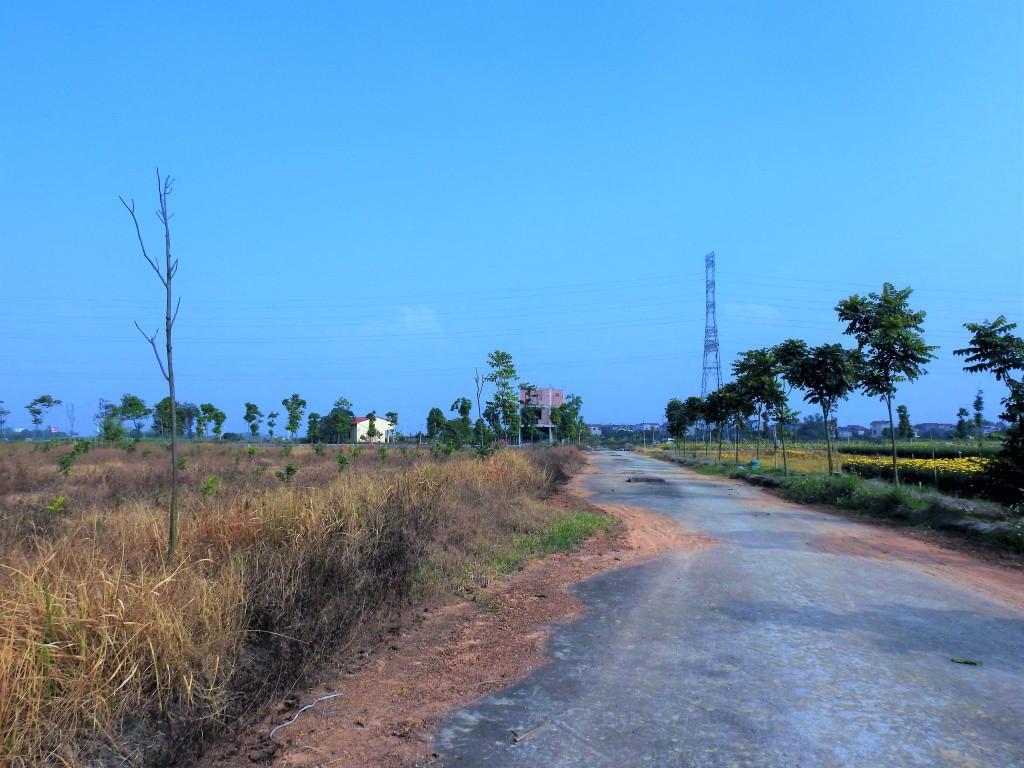Sau 10 năm xây dựng, 2.000 ha đất hoang tàn, bỏ hoang tại Mê Linh - Ảnh 7.