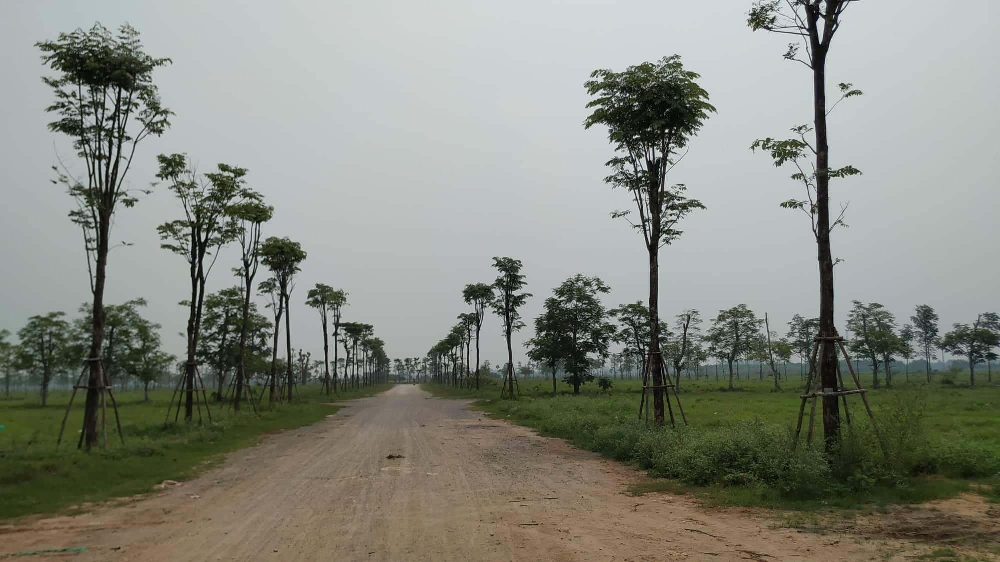 Sau 10 năm xây dựng, 2.000 ha đất hoang tàn, bỏ hoang tại Mê Linh - Ảnh 2.