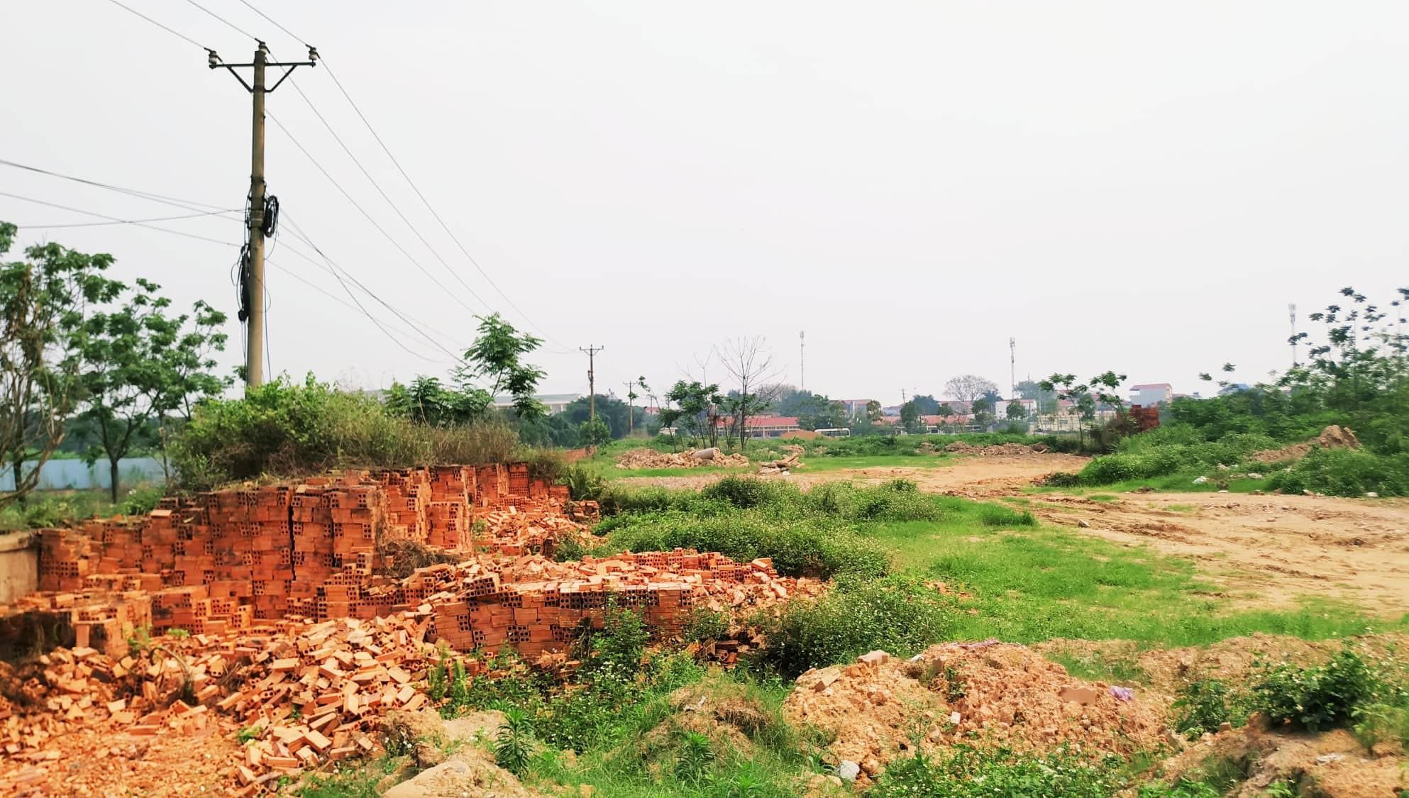 Sau 10 năm xây dựng, 2.000 ha đất hoang tàn, bỏ hoang tại Mê Linh - Ảnh 4.