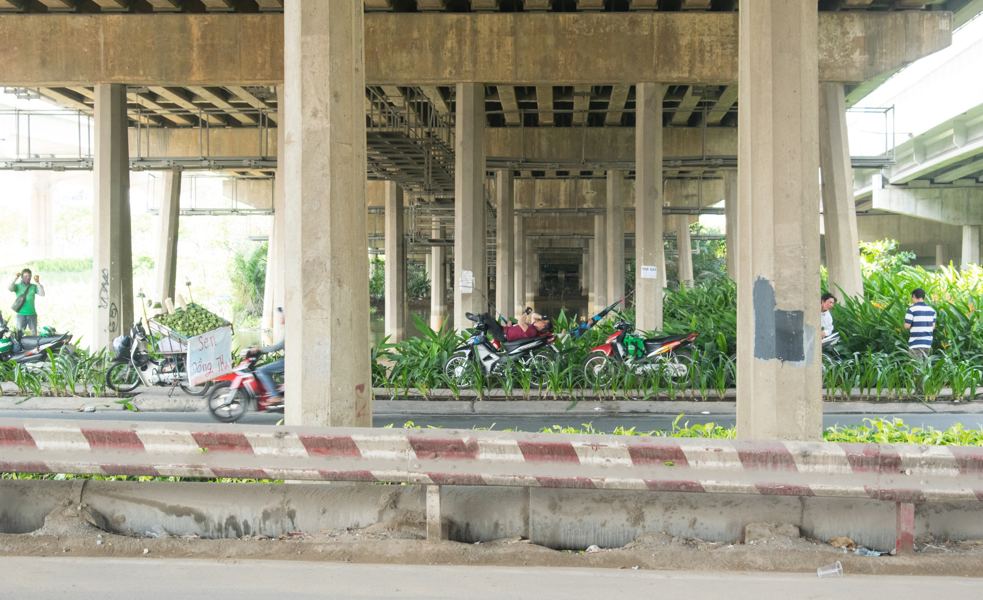 Sài Gòn nóng gần 40 độ C: Người dân xuống gầm cầu mắc võng ngủ trưa - Ảnh 6.