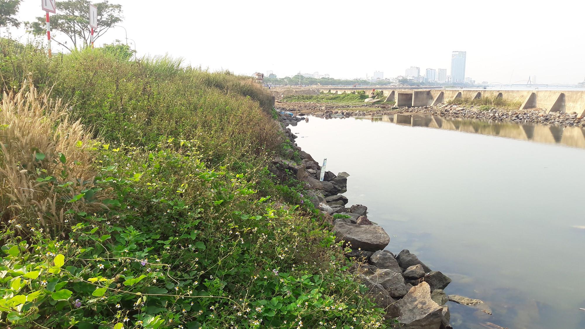 Yêu cầu công khai đánh giá tác động môi trường Dự án bất động sản và bến du thuyền - Marina Complex lấn sông Hàn - Ảnh 1.