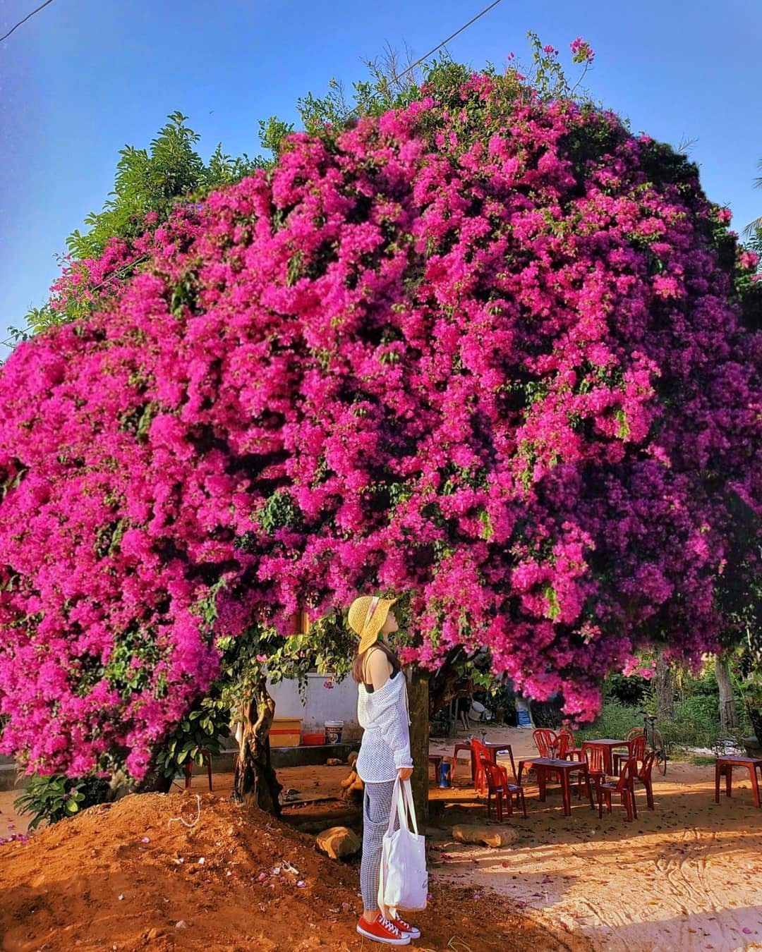 Những hòn đảo thiên đường ngay tại Việt Nam cho dịp lễ 30/4 - 1/5 - Ảnh 8.