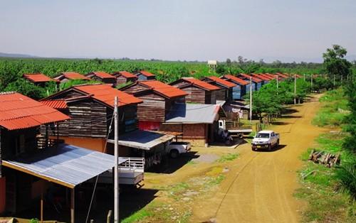 Chủ tịch Thaco mua 20.000 ha đất của bầu Đức - Ảnh 1.