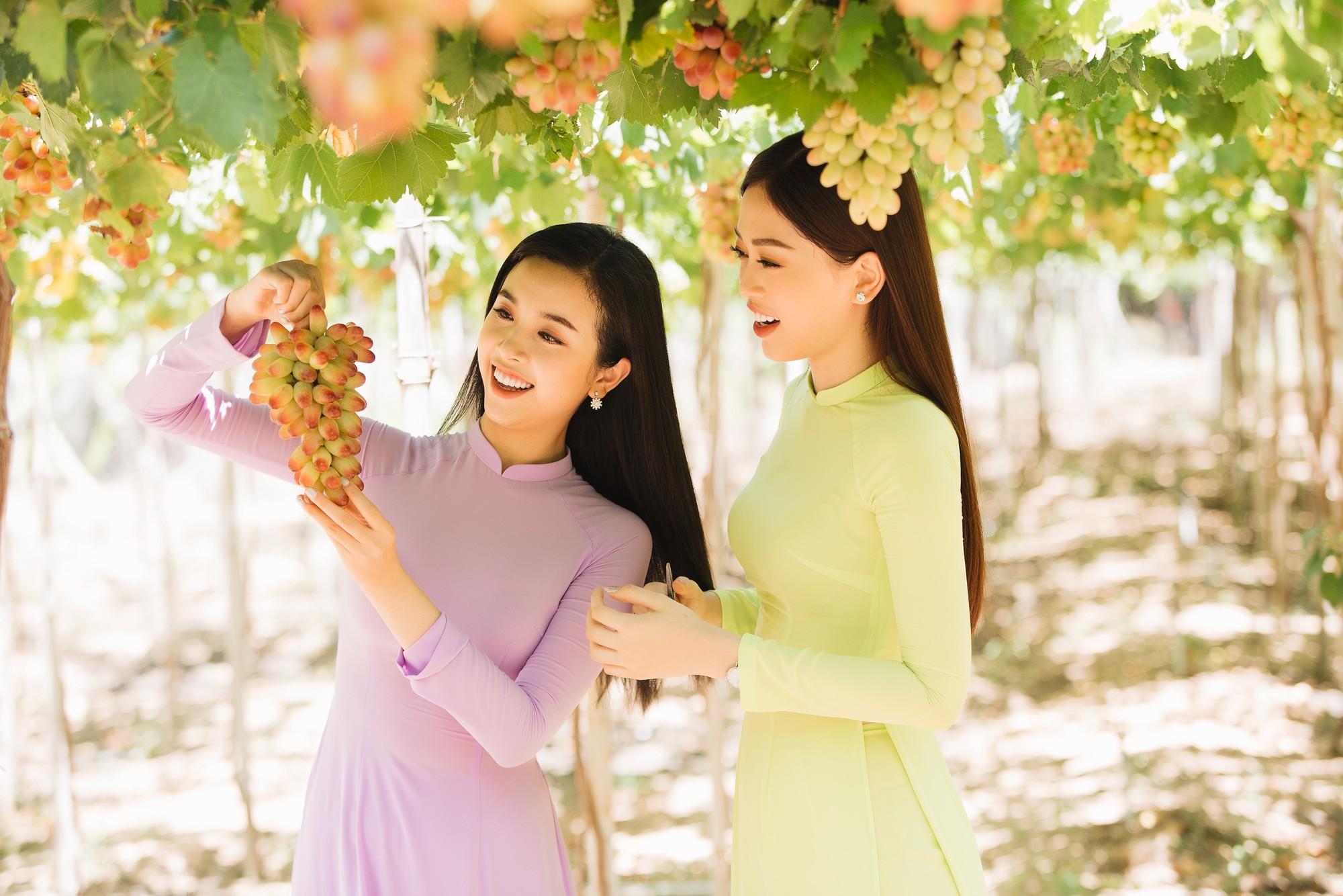 Top 3 Hoa hậu Việt Nam 2018 khám phá nắng gió Ninh Thuận - Ảnh 7.