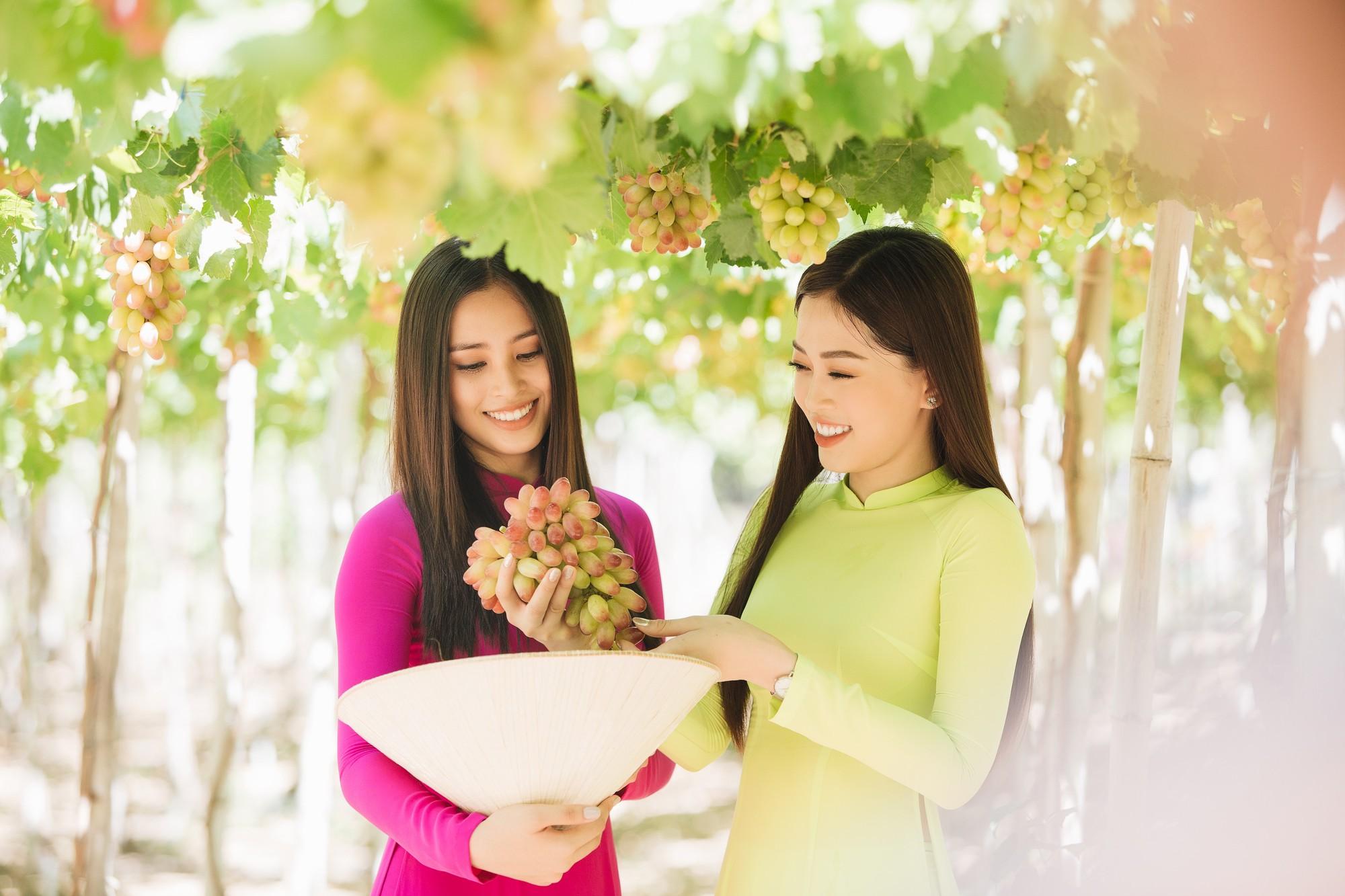 Top 3 Hoa hậu Việt Nam 2018 khám phá nắng gió Ninh Thuận - Ảnh 8.