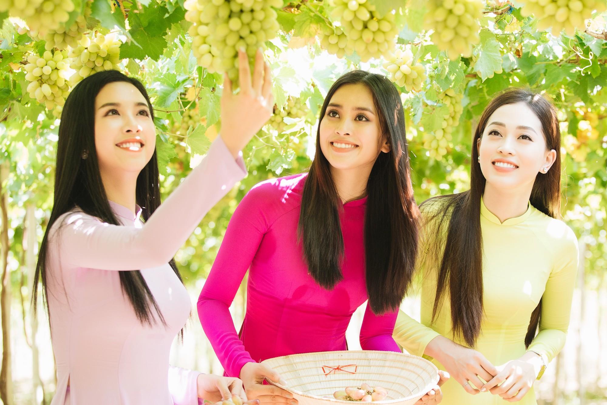 Top 3 Hoa hậu Việt Nam 2018 khám phá nắng gió Ninh Thuận - Ảnh 6.