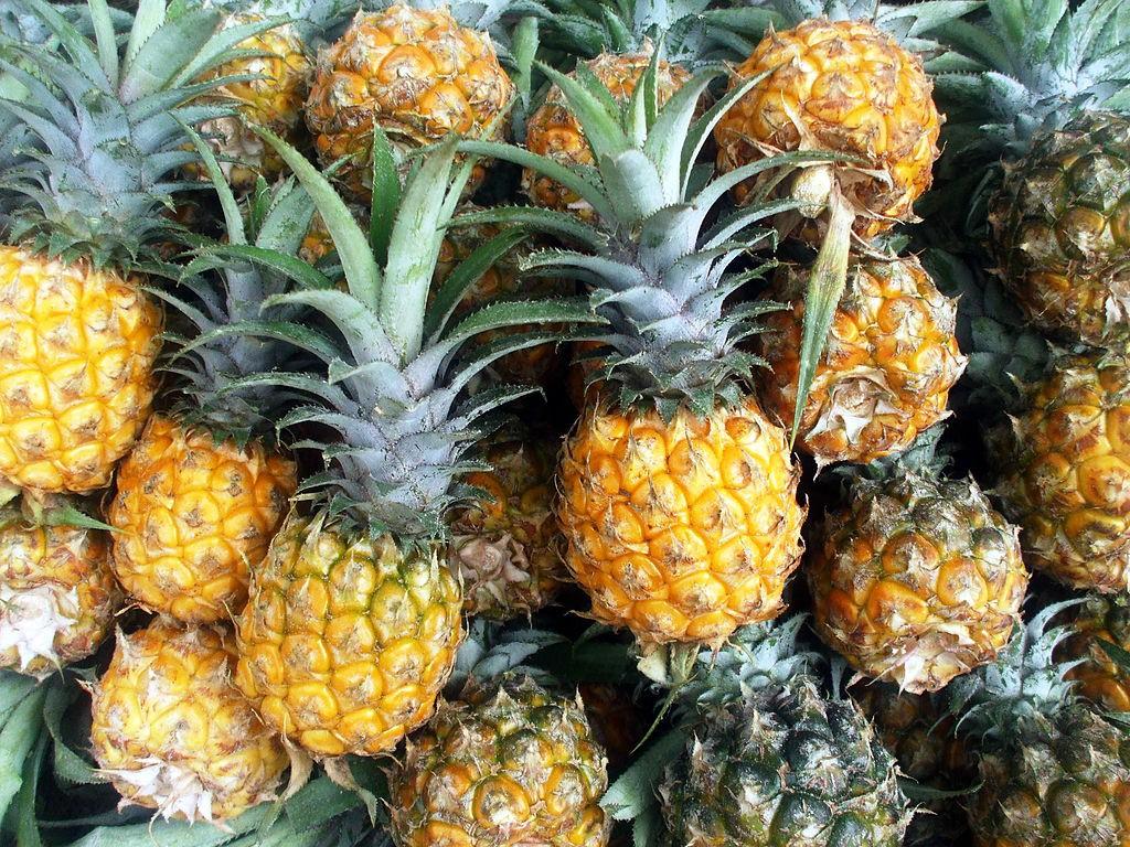 Mùa dứa mật đừng bỏ lỡ quả dứa chín vì nó tốt cho tiêu hóa, giảm viêm khớp, ngừa ung thư - Ảnh 1.