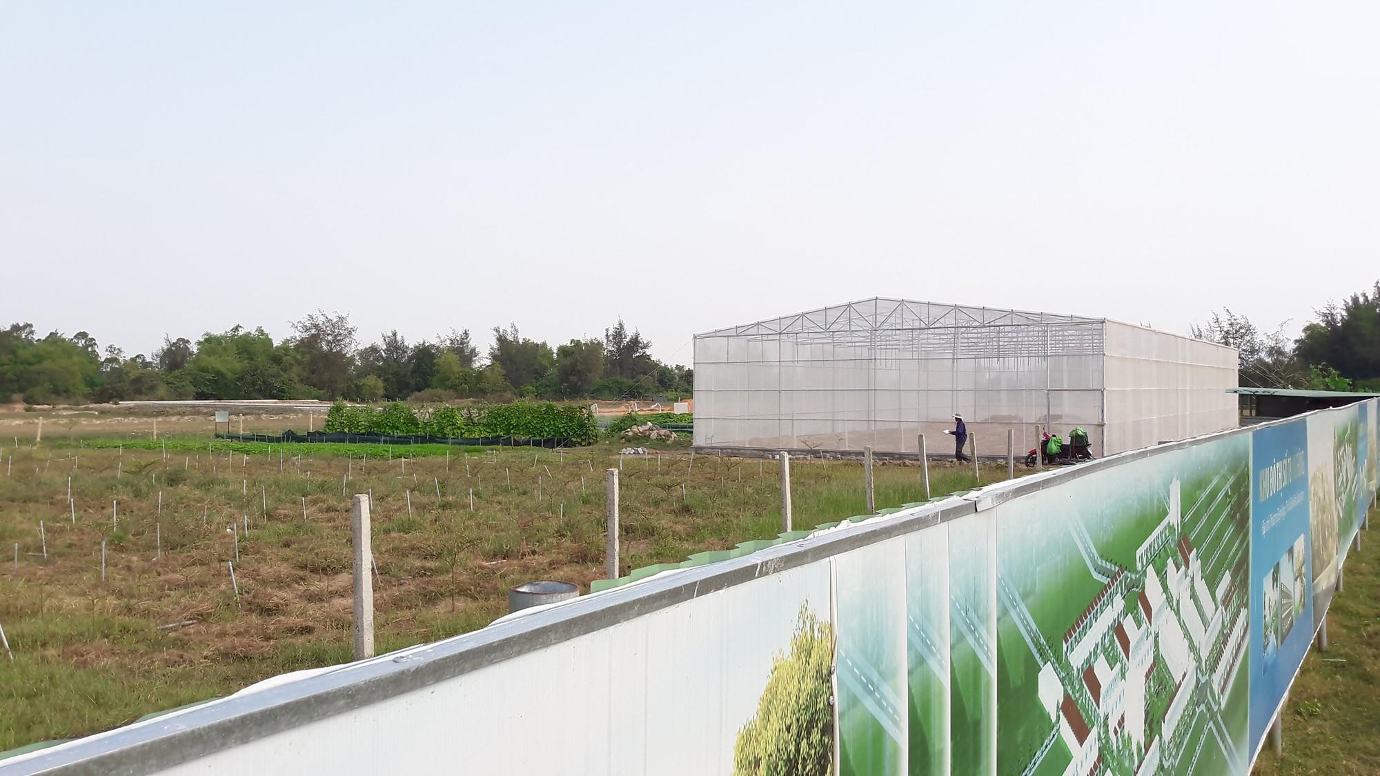 Cận cảnh khu đất của công ty Bách Đạt An ở Quảng Nam mà người dân rót tiền tỉ mua, lòng như lửa đốt đòi sổ đỏ - Ảnh 9.