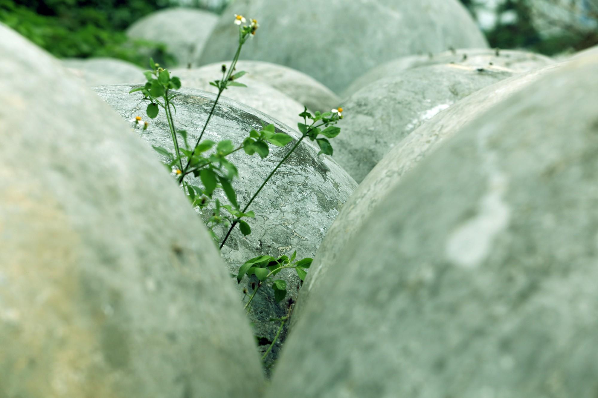 Bóng xích ở sân Mỹ Đình nguy cơ bị chôn trong rác - Ảnh 5.
