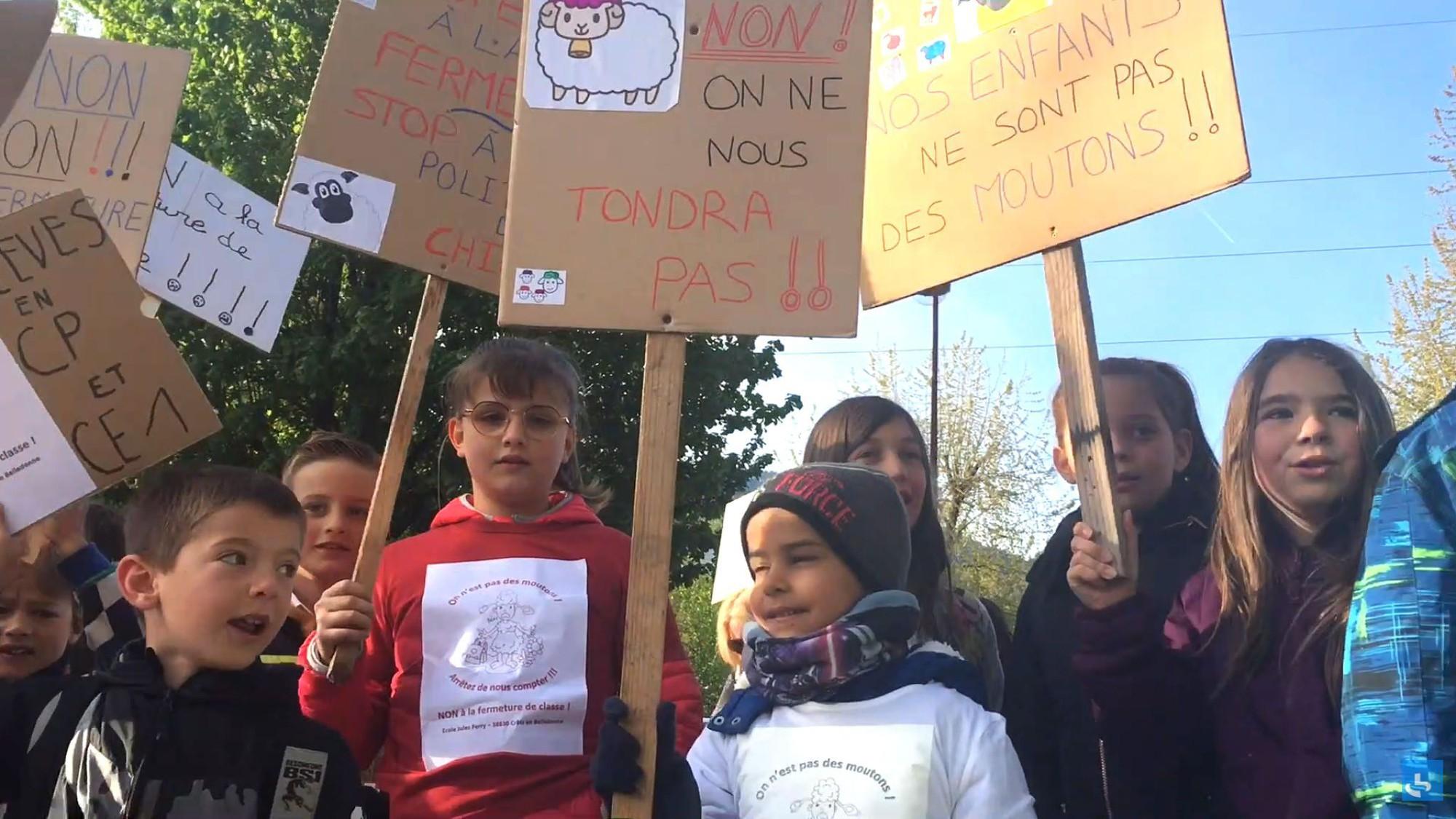 Pháp: Cho cừu đi học để cứu trường cứu lớp - Ảnh 2.