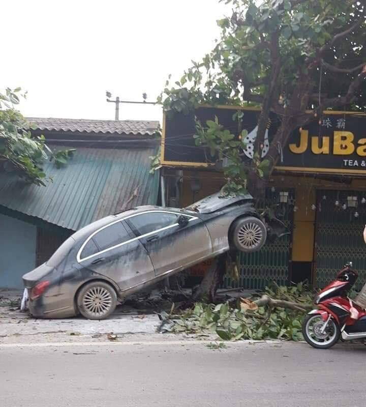 Phú Thọ: Mercedes mất lái 'leo' lên cây, một người bị thương - Ảnh 1.