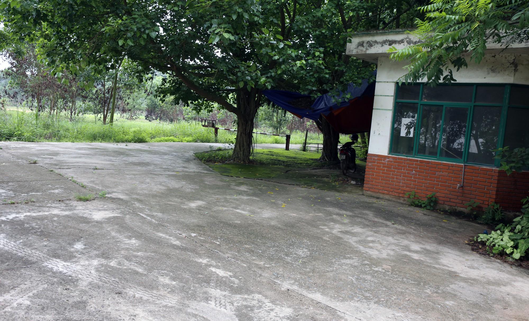 Bệnh viện qui mô 1.000 giường ở Hà Nội thành nơi nuôi gà - Ảnh 5.