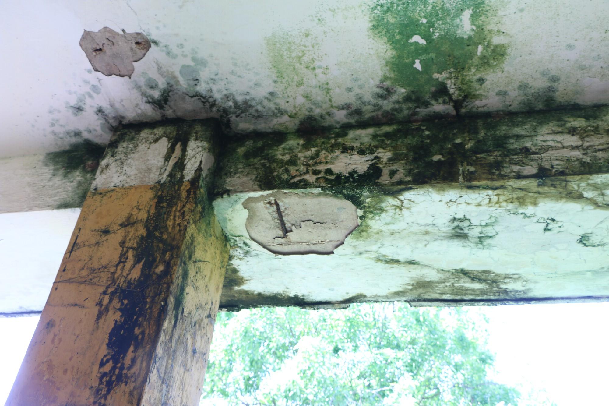 Vữa trần rơi, lan can được rào tạm bằng dây thép gai, ngôi trường cấp 3 giữa Hà Nội có nguy cơ đổ sập  - Ảnh 13.