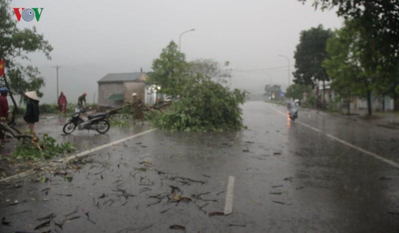 Mưa đá, lốc xoáy gây thiệt hại nặng nề tại Nghệ An, Hà Tĩnh - Ảnh 3.