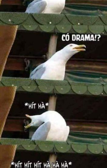 Drama là gì, sao giờ lên mạng, đâu cũng thấy drama? - Ảnh 1.
