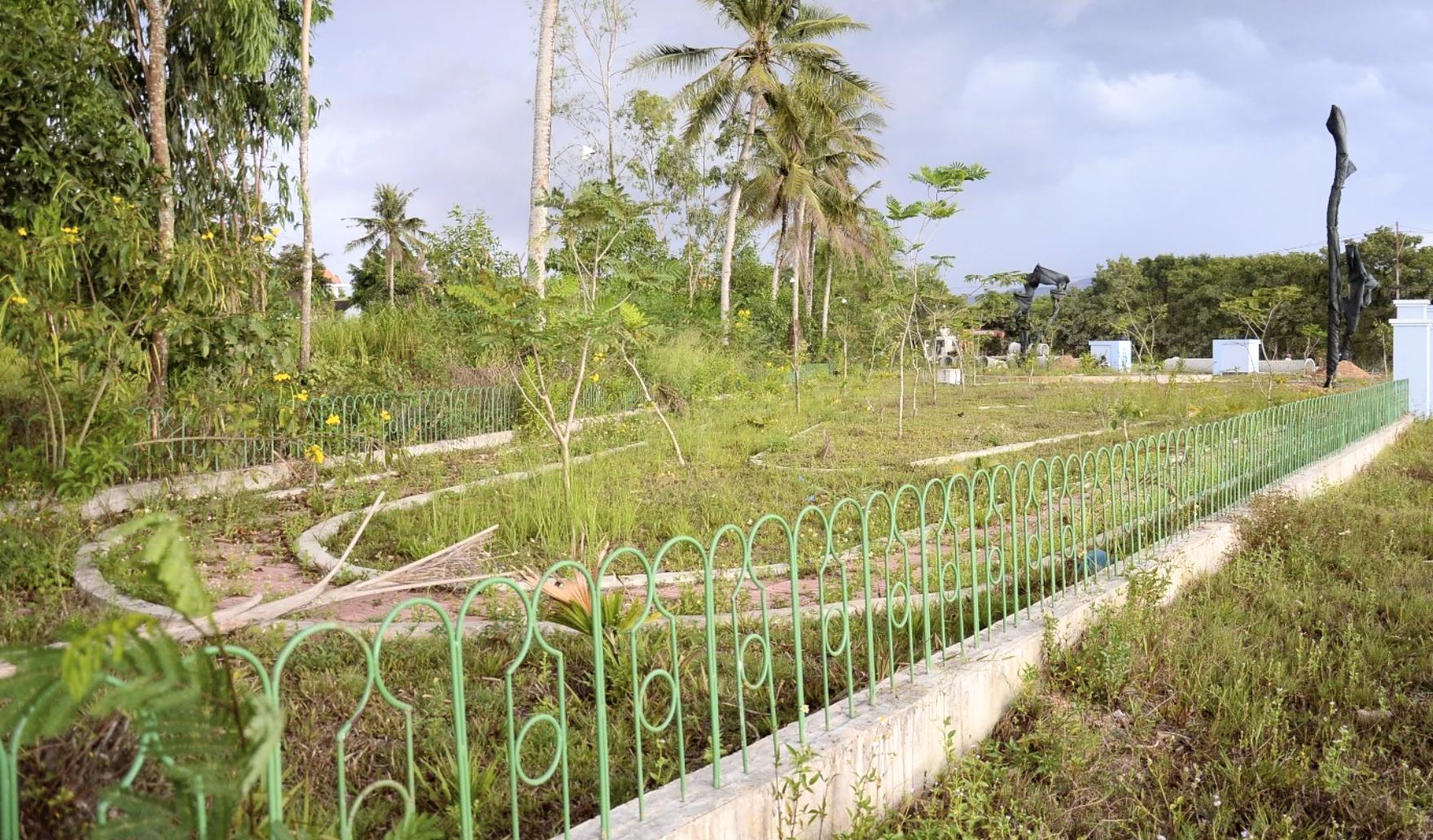 Quảng Ngãi: Dân chê công viên làm 1 tỉ đồng lãng phí, cỏ dại mọc um tùm - Ảnh 2.