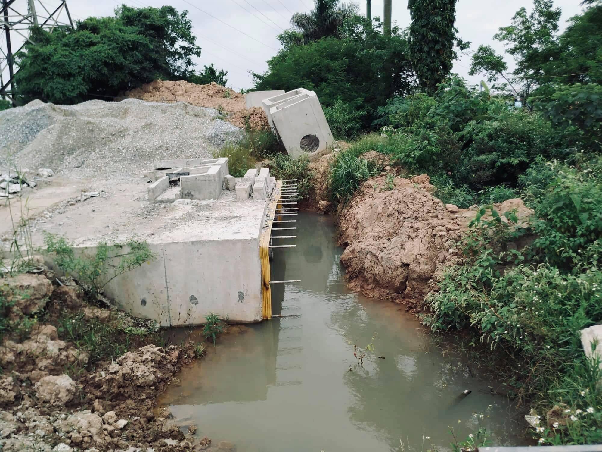 Người dân Gia Lâm xót xa nhìn đất vàng bị bỏ hoang không được canh tác - Ảnh 2.