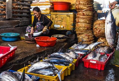 Nhọc nhằn kiếm sống bên chảo lửa hấp cá ở cảng Quy Nhơn - Ảnh 4.