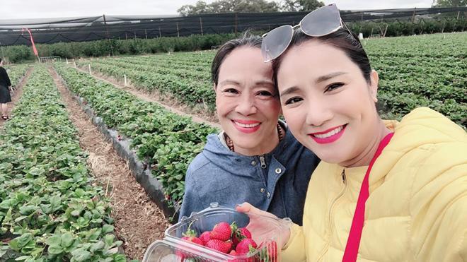 Sao Việt hôm nay (25/5): Ngọc Trinh gọi ồn ào LHP Cannes là màn trình diễn để đời, Nam Thư đáp trả anti-fan - Ảnh 4.