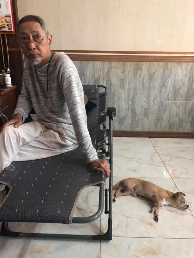 Những hình ảnh cuối cùng của nghệ sĩ Lê Bình và chú chó nhỏ Lucky  - Ảnh 2.