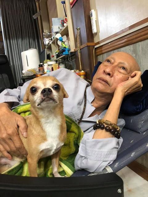 Những hình ảnh cuối cùng của nghệ sĩ Lê Bình và chú chó nhỏ Lucky  - Ảnh 4.