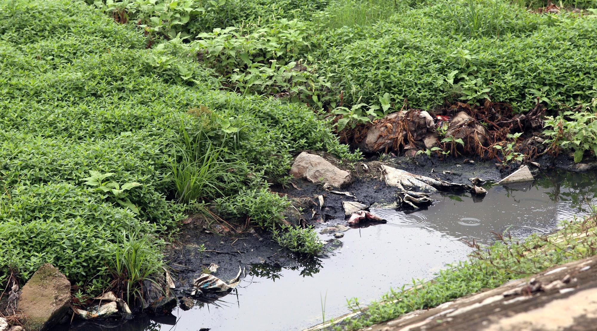 Công viên 300 tỉ đồng trên đất vàng ở Hà Nội mới khánh thành đã bị dân chê hôi thối - Ảnh 9.