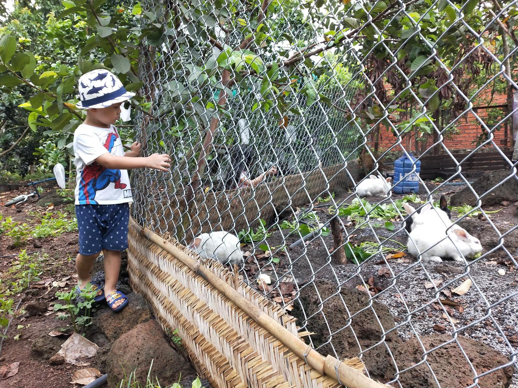 Những tour du lịch sinh thái gần Sài Gòn cho các gia đình có trẻ nhỏ ngày hè - Ảnh 2.