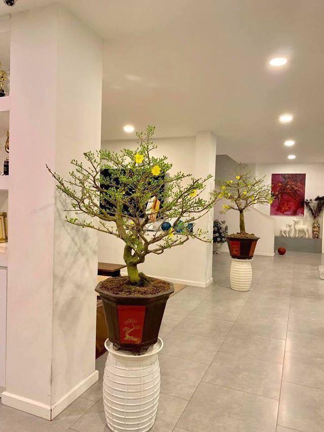 Ngắm căn biệt thự sang trọng ngập tràn hoa lá của Hồ Ngọc Hà - Ảnh 9.