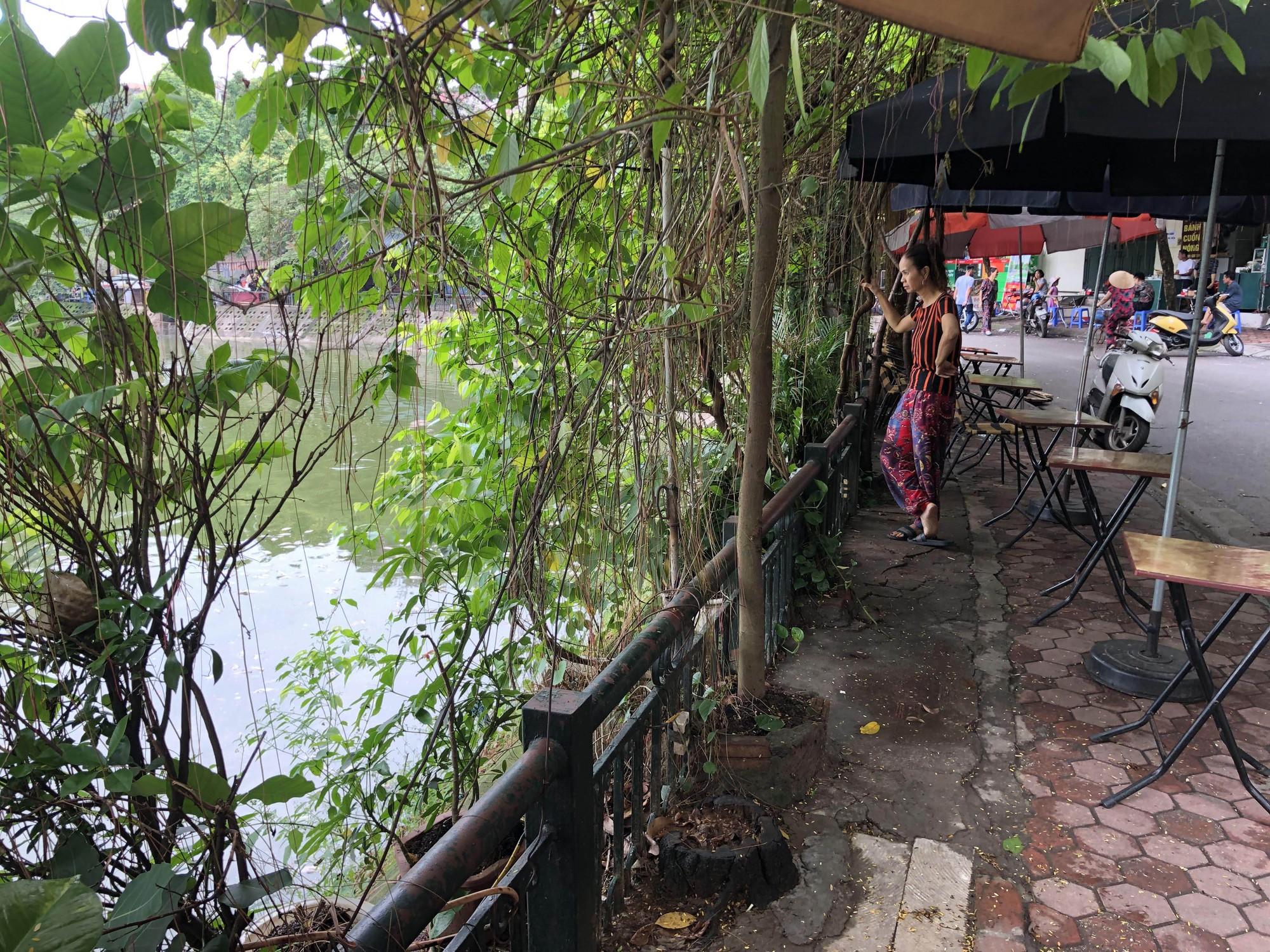 Hà Nội: Cá chết ở hồ Văn Chương khiến cư dân quanh hồ không dám thở - Ảnh 9.
