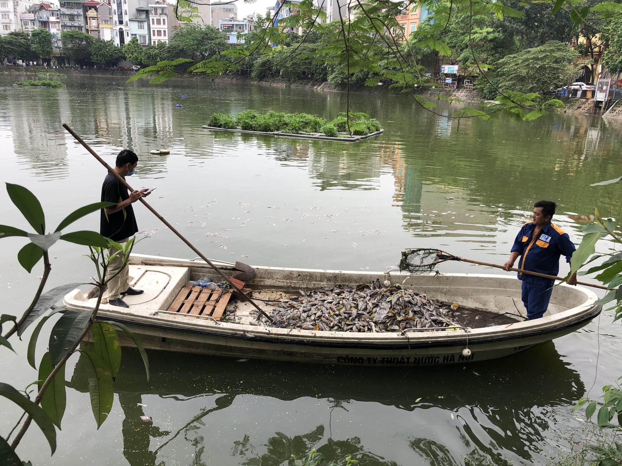 Hà Nội: Cá chết ở hồ Văn Chương khiến cư dân quanh hồ không dám thở - Ảnh 5.