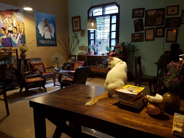 Những quán cà phê đẹp phù hợp với người LGBT ở Hà Nội - Ảnh 1.
