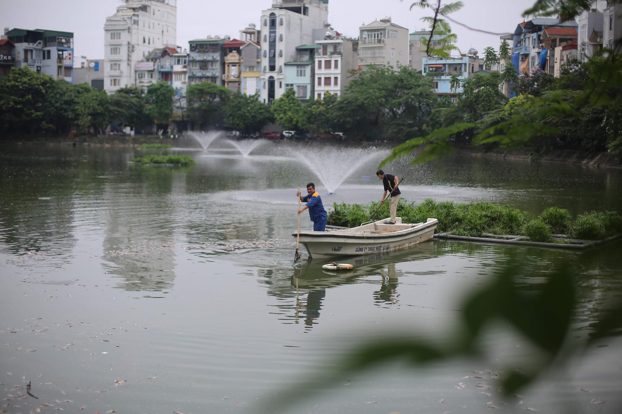 Hà Nội: Cá chết ở hồ Văn Chương khiến cư dân quanh hồ không dám thở - Ảnh 2.