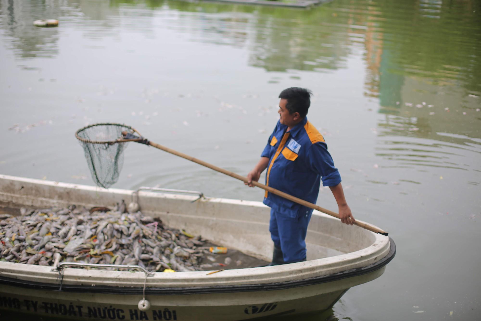 Hà Nội: Cá chết ở hồ Văn Chương khiến cư dân quanh hồ không dám thở - Ảnh 7.