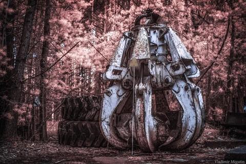 Vùng đất chết Chernobyl hóa xứ thần tiên qua ống kính nhiếp ảnh gia - Ảnh 10.