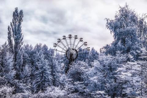 Vùng đất chết Chernobyl hóa xứ thần tiên qua ống kính nhiếp ảnh gia - Ảnh 11.