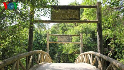 Đến Đồng Tháp du lịch để hòa mình cùng thiên nhiên vào mùa hè này - Ảnh 1.