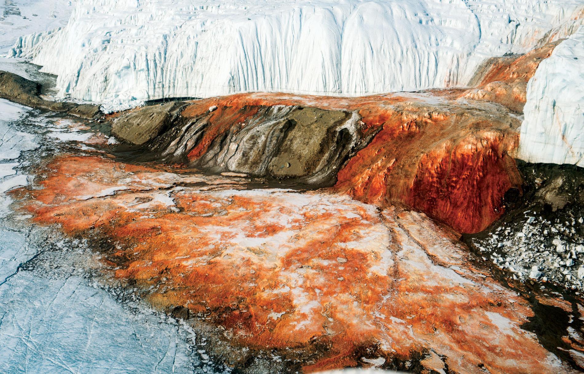 Bí ẩn thác máu tại Nam Cực - Ảnh 3.