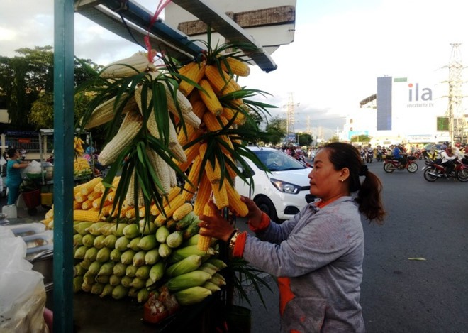 Bắp luộc bùng binh bán hơn 600 trái/ngày khiến Việt kiều tìm đến: 'Tôi bán đến khi chết!' - Ảnh 4.