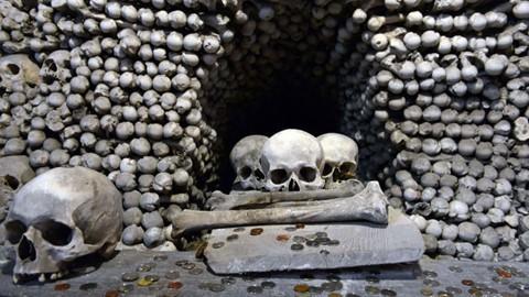 Nhà thờ ác mộng được xây dựng từ 40.000 bộ xương người - Ảnh 9.