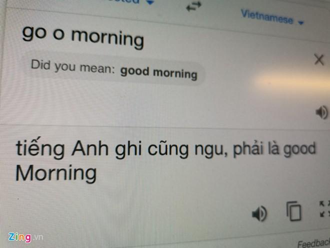 Google Dịch tiếng Việt đang bị phá hoại - Ảnh 1.