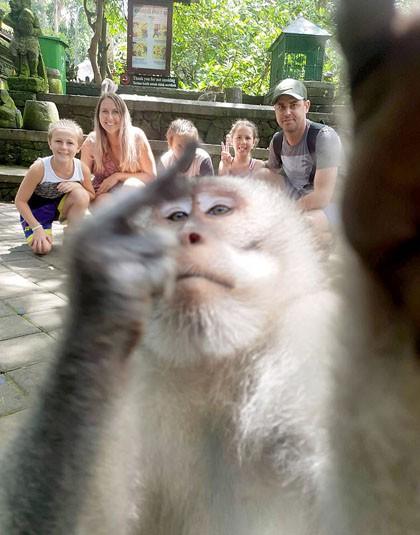 Khỉ giơ 'ngón tay thối' khi du khách đang chụp ảnh ở Bali - Ảnh 1.
