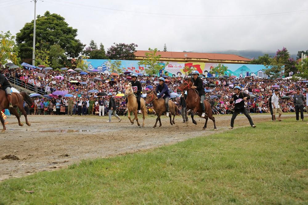 'Vó ngựa trên mây' - giải đua ngựa lần đầu tiên được tổ chức tại Fansipan - Ảnh 1.